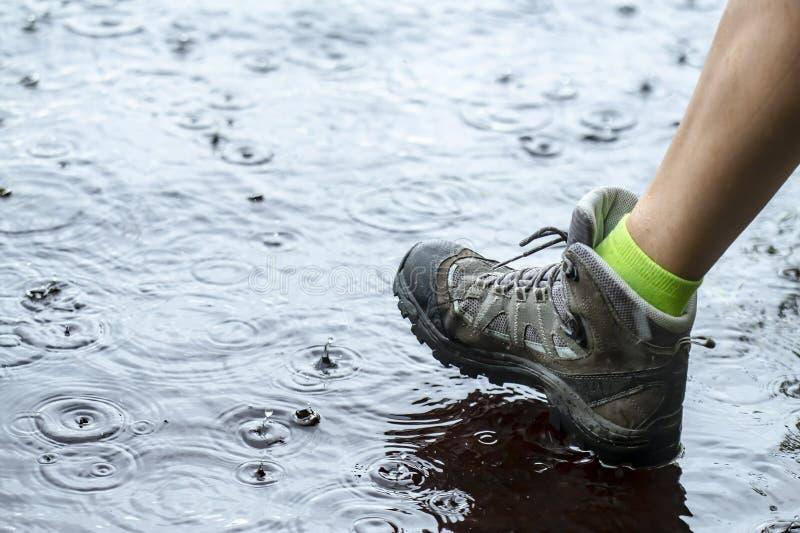 Vrouw die in toerist waterdichte wandelingslaarzen op water in vulklei in de regen lopen stock fotografie