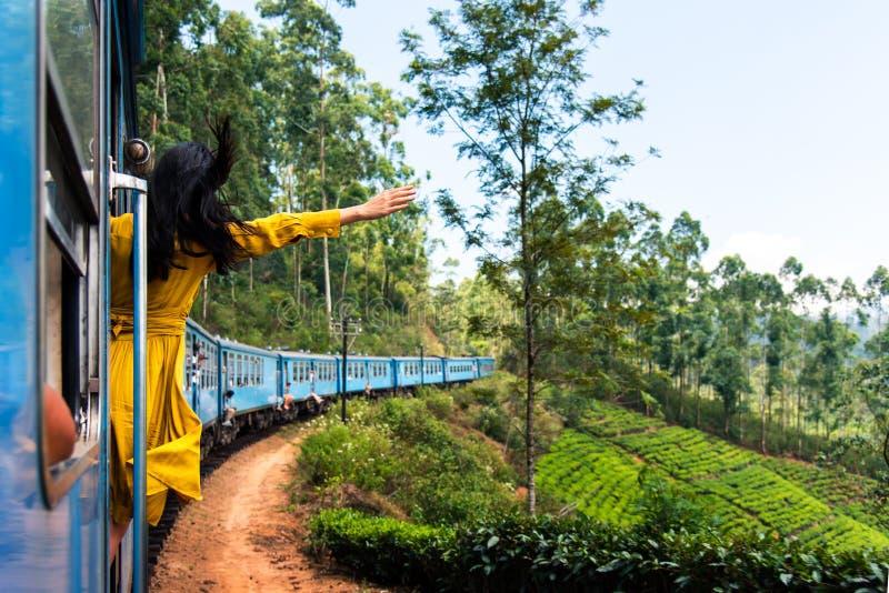 Vrouw die trein van rit genieten door Sri Lanka-theeaanplantingen stock foto's