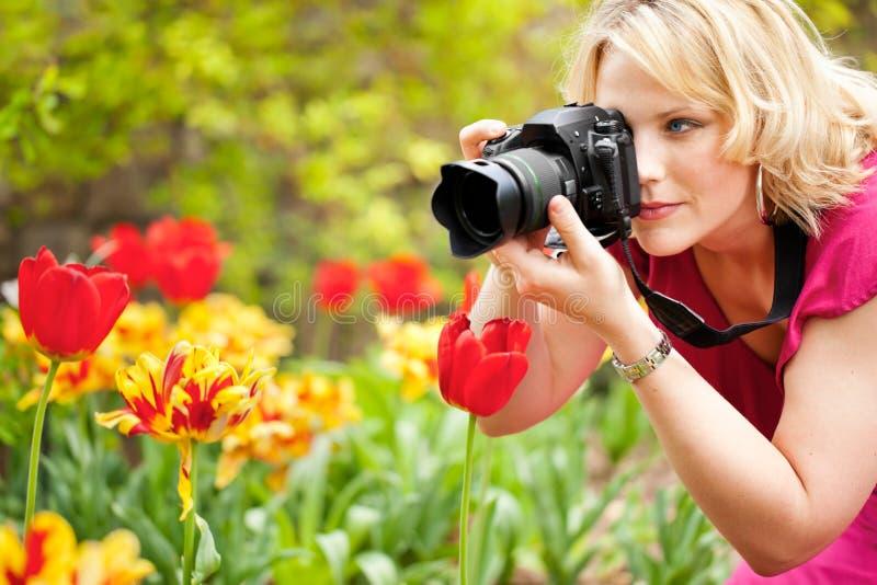 Vrouw die tulpen fotografeert stock fotografie