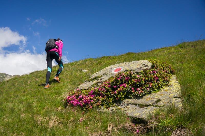 Vrouw die zich naast een grote rots in de bergen bevinden royalty-vrije stock afbeeldingen