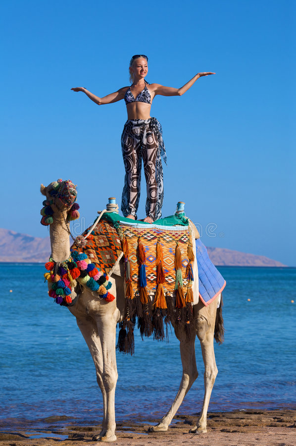 Vrouw die zich op een Kameel op een oceaanachtergrond bevindt stock fotografie