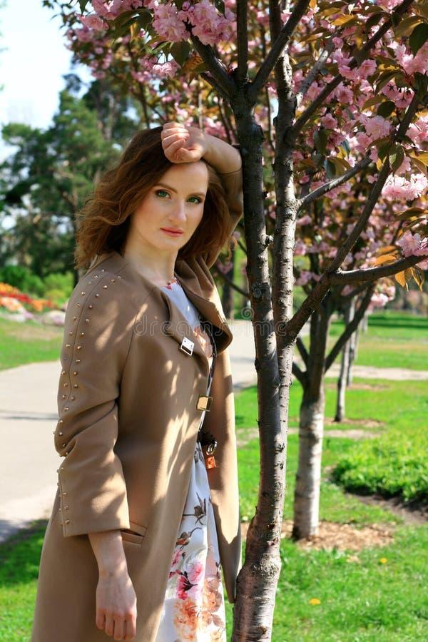 Vrouw in een bloeiend park van de kersenbloesem De lente Sakura stock afbeelding