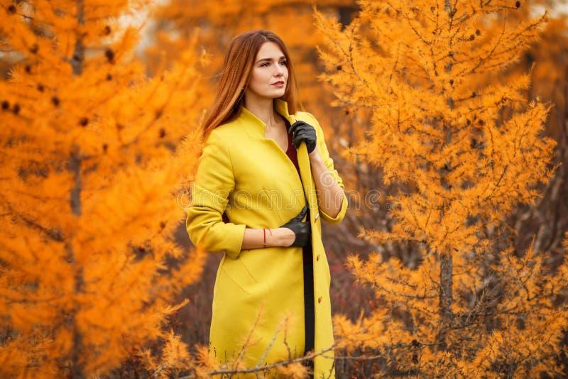 Vrouw in een de herfstbos stock afbeelding