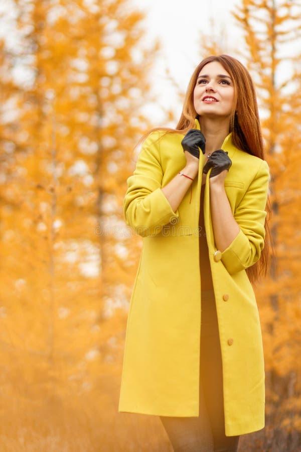 Vrouw in een de herfstbos royalty-vrije stock foto
