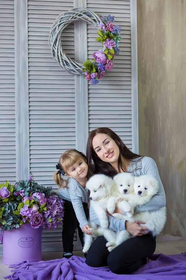 Vrouw en babymeisje het spelen met whit harige hond in studio schiet op purple royalty-vrije stock foto's