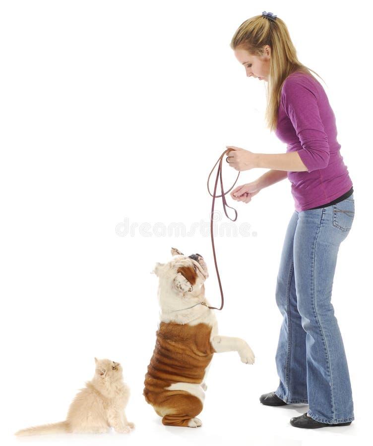 Vrouw en haar huisdieren stock afbeeldingen