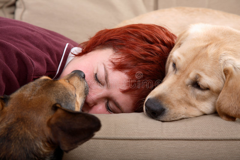 Vrouw en haar huisdierenhonden royalty-vrije stock afbeelding