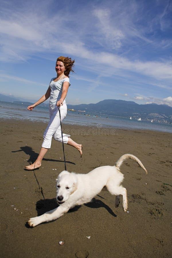 Vrouw en hond stock fotografie