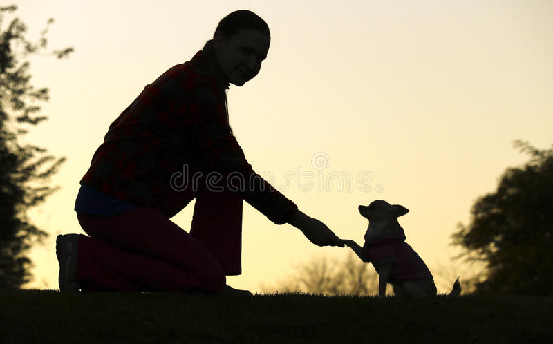 Vrouw en Hond` s Silhouet royalty-vrije stock afbeeldingen