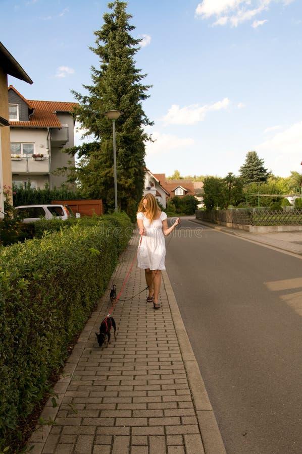 Vrouw en honden. stock foto