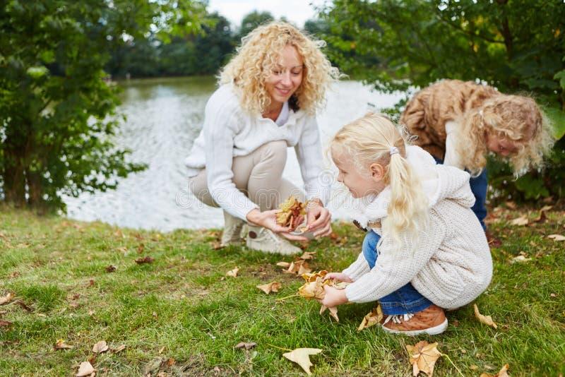 Vrouw en kinderen die bladeren verzamelen stock foto's