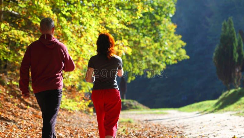 Vrouw en man die de dwarssleep van het land in de herfstbos lopen stock fotografie