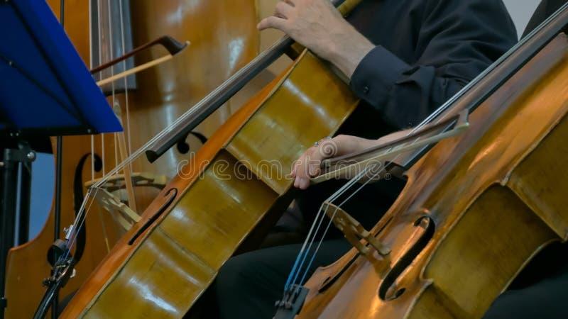Vrouw en man het spelen cello royalty-vrije stock foto's