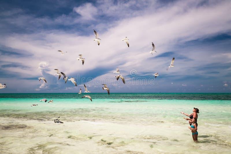 Vrouw en meisje die van hun vrije tijd op het strand genieten, voedend vliegende zeemeeuwen stock foto's