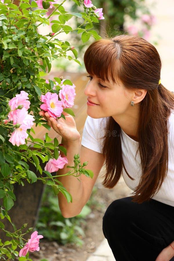 Vrouw en rozen stock foto