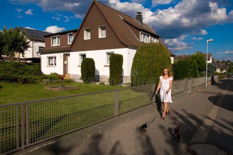 Vrouw en twee kleine honden. stock fotografie