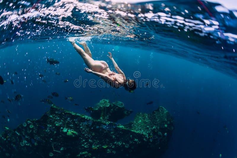 Vrouw freediver in bikini swin in tropische oceaan bij schipbreuk stock afbeeldingen
