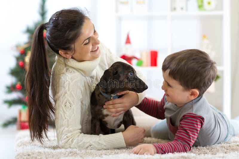 Vrouw, haar zoon en hond die in geknuffel in Kerstmistijd genieten van royalty-vrije stock afbeelding