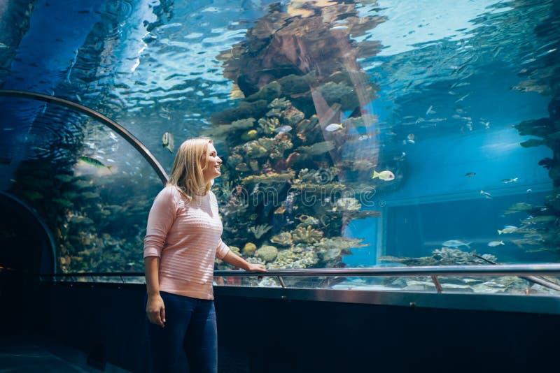 Vrouw in het aquarium die op de vissen letten stock foto