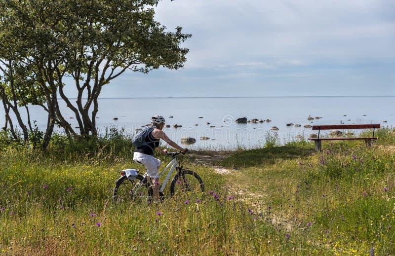 Vrouw het bicycling op de overzeese kust stock foto