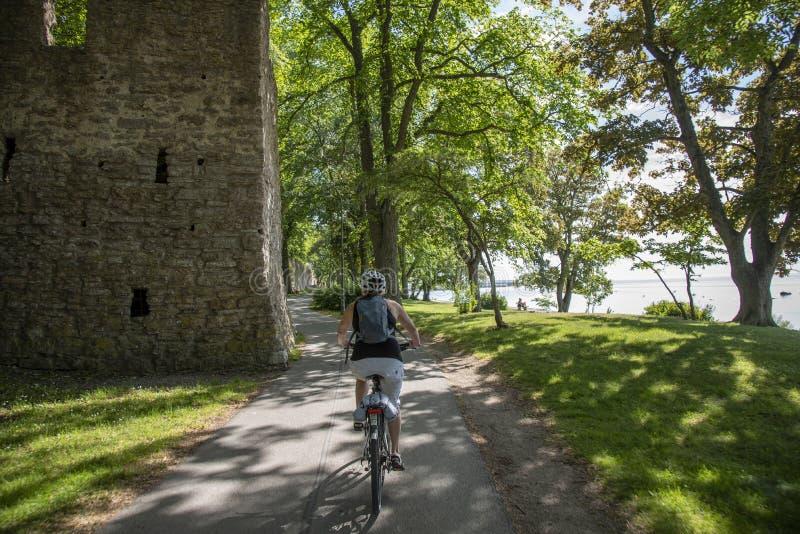 Vrouw het bicycling op de weg stock afbeelding