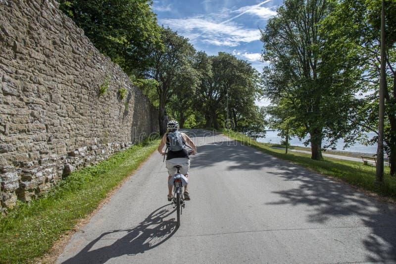 Vrouw het bicycling op de weg royalty-vrije stock foto