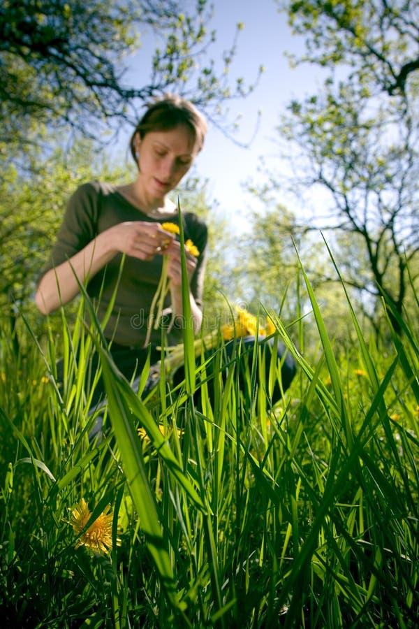 Vrouw in het Gras van de Zomer royalty-vrije stock afbeelding