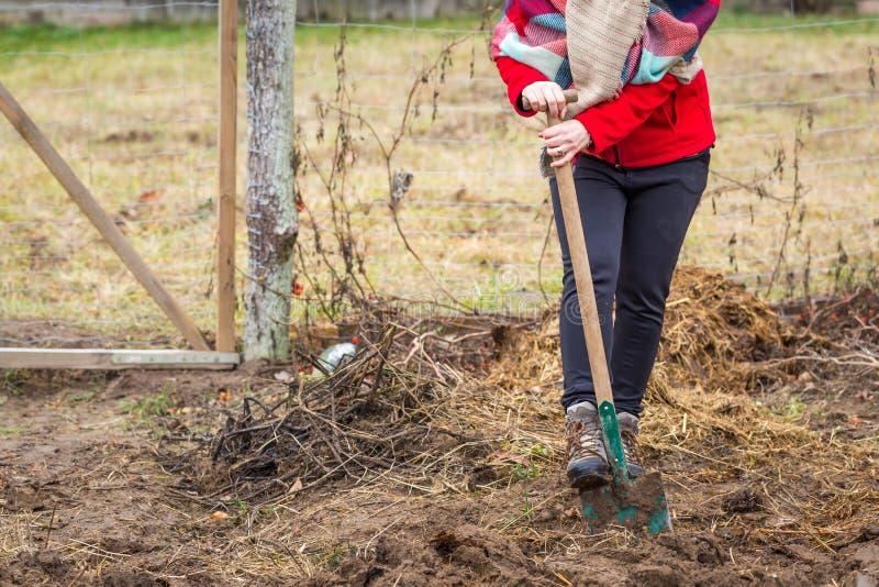 Vrouw het graven met spade in tuin royalty-vrije stock afbeeldingen