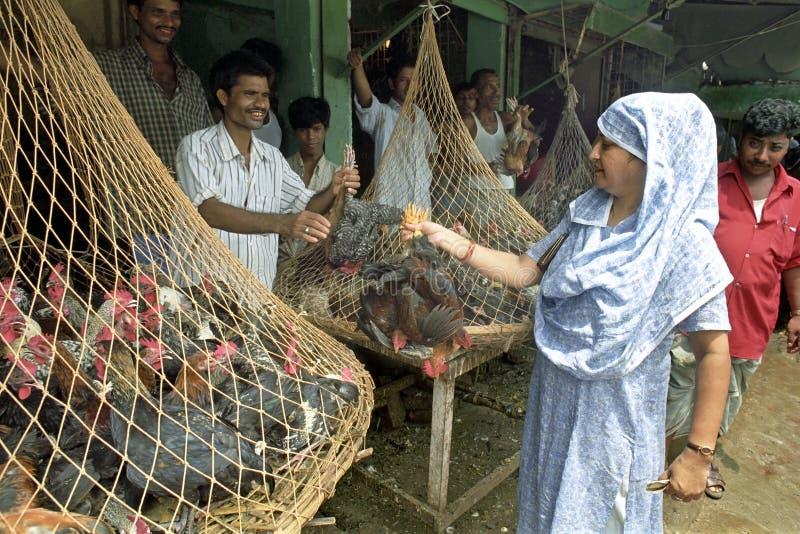 Vrouw het kopen kippen van landbouwer op markt royalty-vrije stock afbeelding