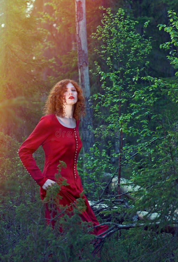 Vrouw het mystieke bos stock fotografie