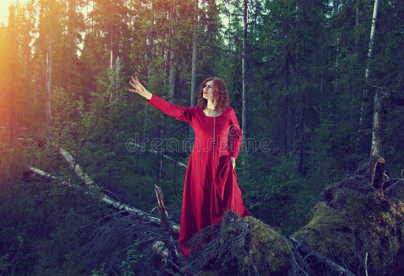 Vrouw het mystieke bos royalty-vrije stock foto's