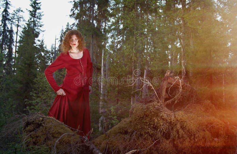 Vrouw het mystieke bos stock afbeelding