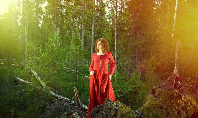 Vrouw het mystieke bos royalty-vrije stock afbeelding