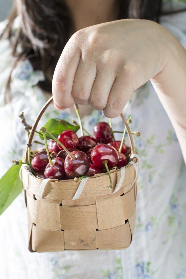 Vrouw het plukken kersen in de tuin stock foto