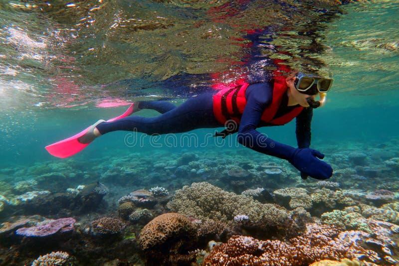 Vrouw het snorkelen duikt stock foto's