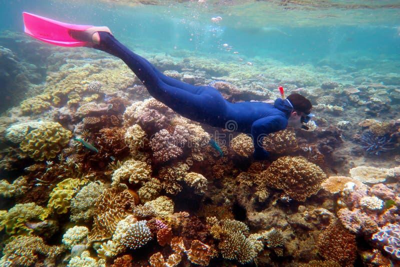 Vrouw het snorkelen duikt royalty-vrije stock afbeelding