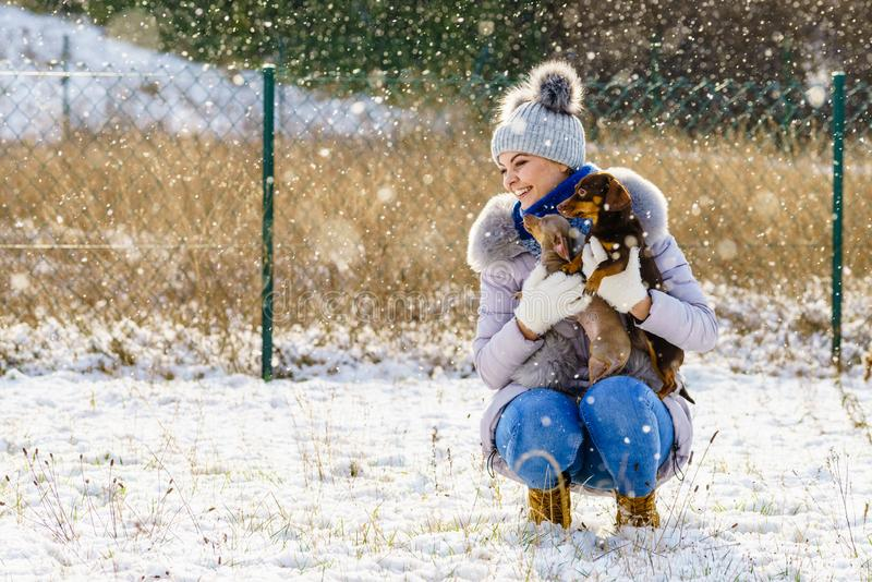 Vrouw het spelen met honden tijdens de winter stock afbeelding