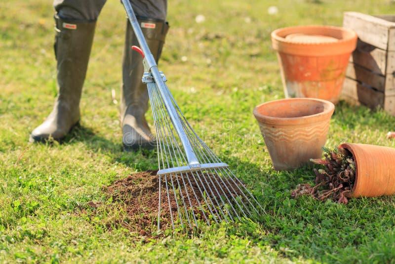Vrouw het tuinieren royalty-vrije stock afbeeldingen