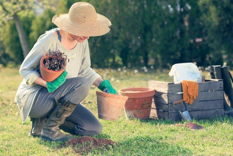 Vrouw het tuinieren royalty-vrije stock foto