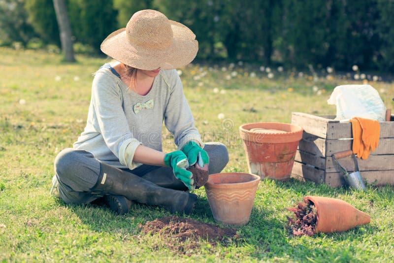 Vrouw het tuinieren stock afbeeldingen