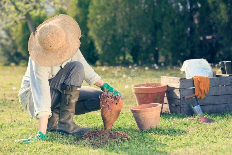 Vrouw het tuinieren royalty-vrije stock fotografie
