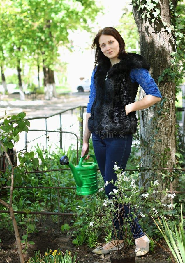Vrouw in het tuinieren met bloemen royalty-vrije stock foto