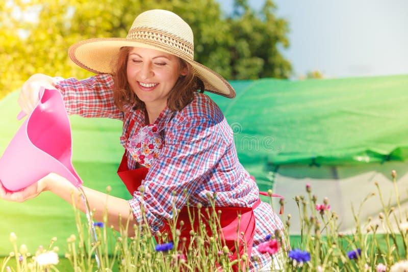 Vrouw het water geven bloemen in tuin stock afbeelding