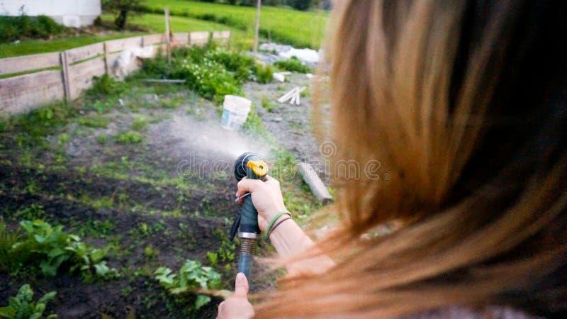 Vrouw het water geven het groeien installaties in haar tuin royalty-vrije stock foto's