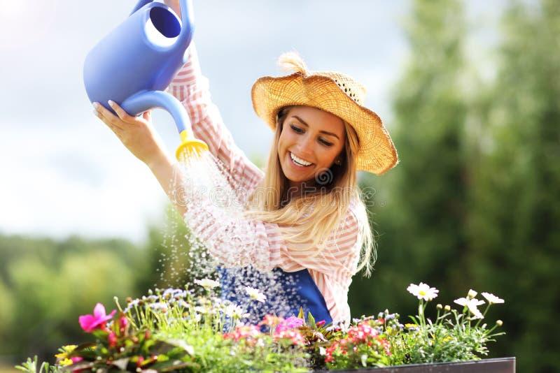 Vrouw het water geven installaties buiten in de zomer stock afbeeldingen