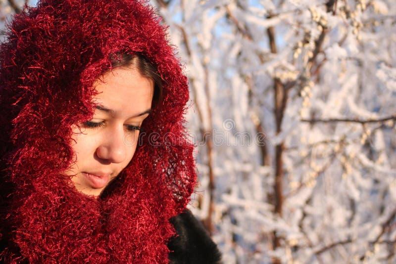 Vrouw in HoofdSjaal Sparkly stock afbeelding
