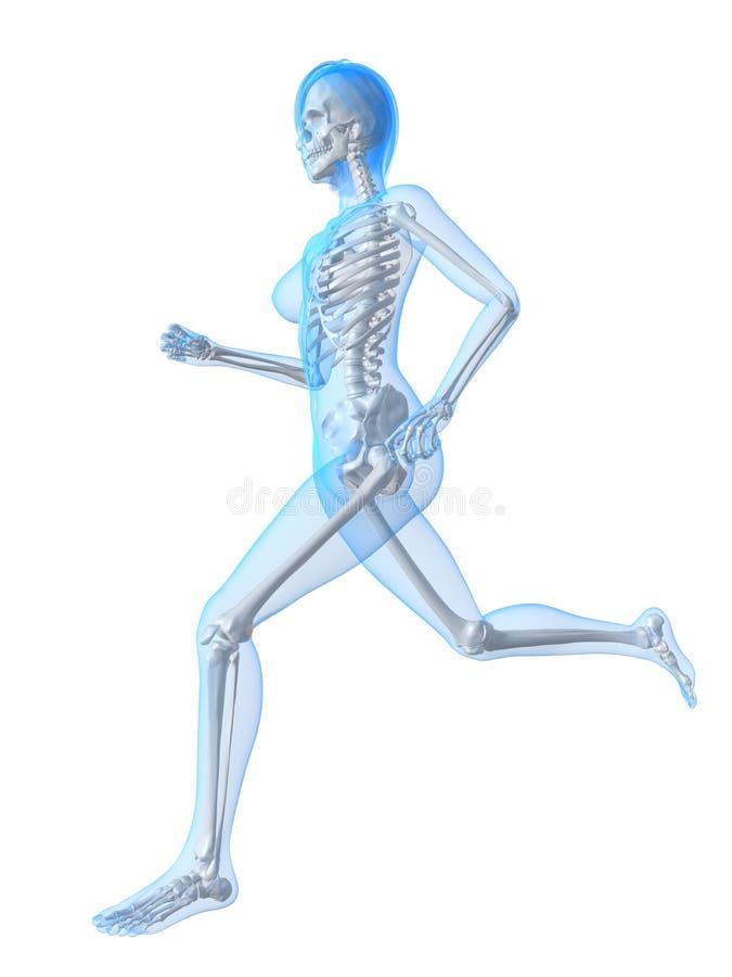 Vrouw - jogger stock illustratie