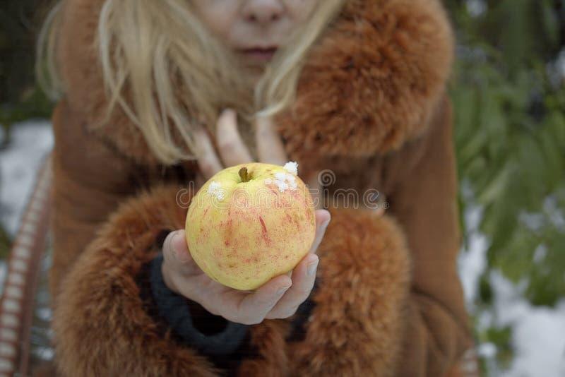 Vrouw met Apple in de Winter royalty-vrije stock foto's
