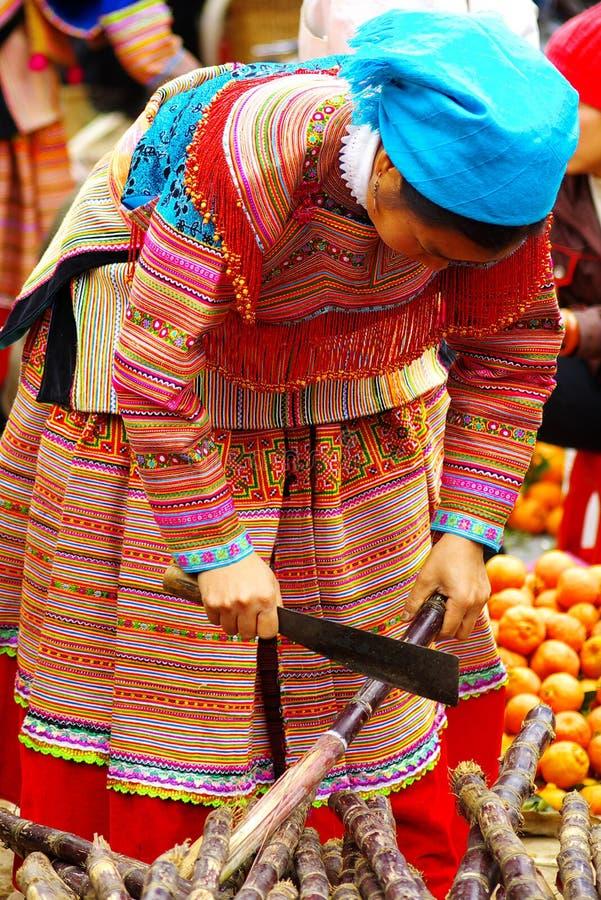 Vrouw met baby op de markt bij Bac Ha, Vietnam stock fotografie