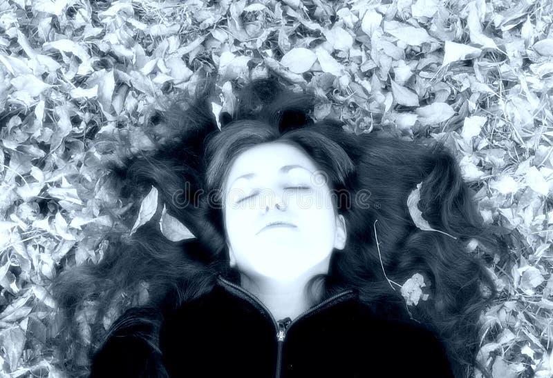 vrouw met bladeren in haar haar stock afbeelding